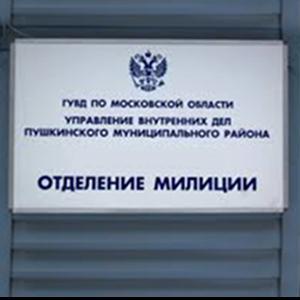 Отделения полиции Дивеево